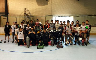 Arizona box lacrosse